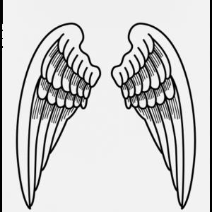 Křídla bílé dámské tričko